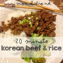 easy 20 minute korean beef and rice recipe