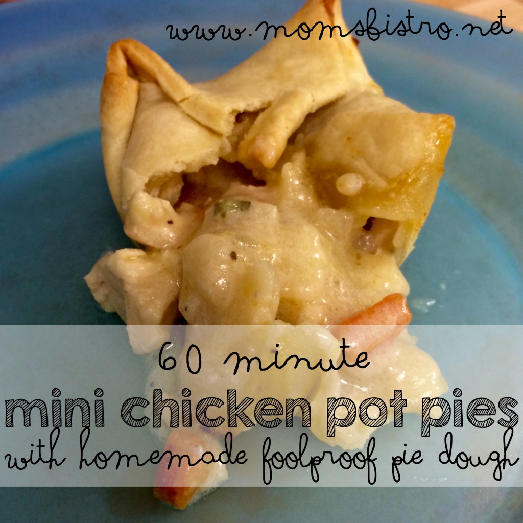 60 minute mini chicken pot pie with homemade pie dough moms bistro foolproof
