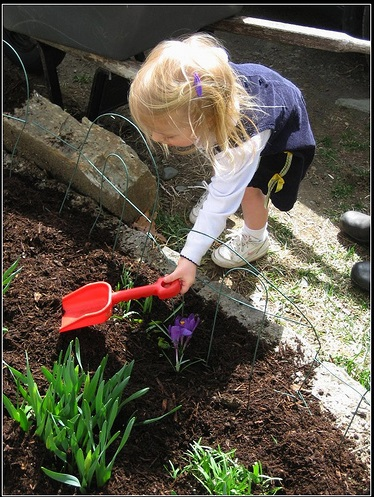 5 Steps to Creating a Memorable First Garden with Kids