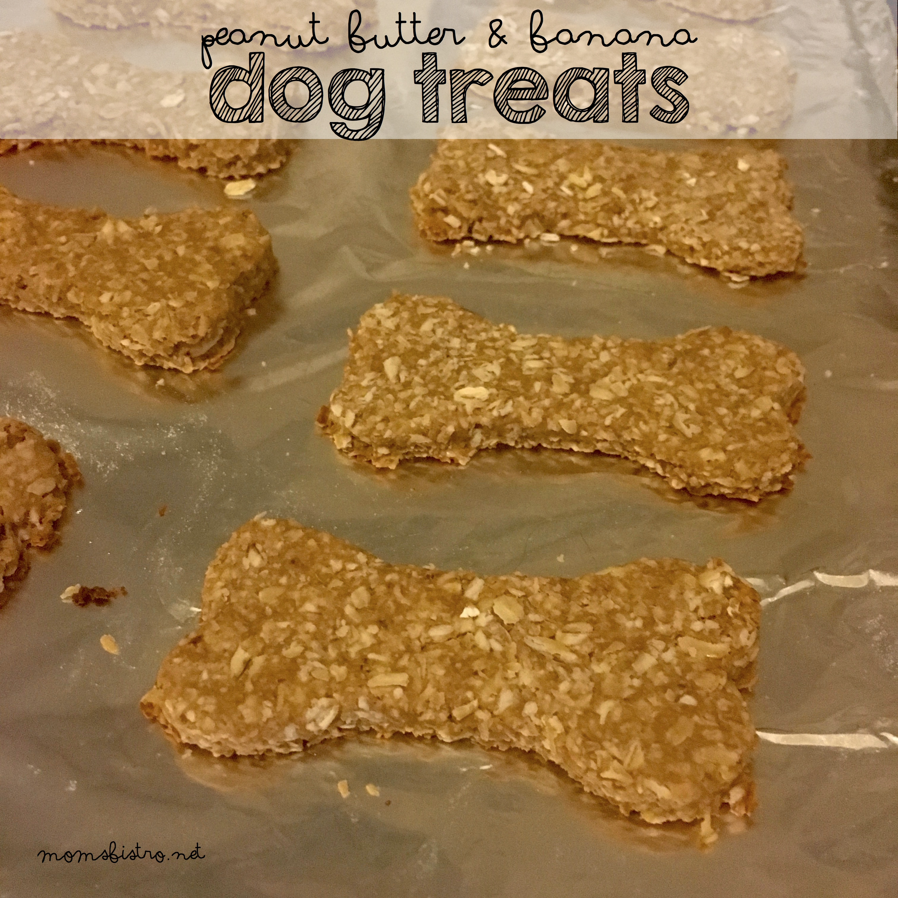 Dog Treats!  Peanut Butter and Banana Dog Treats