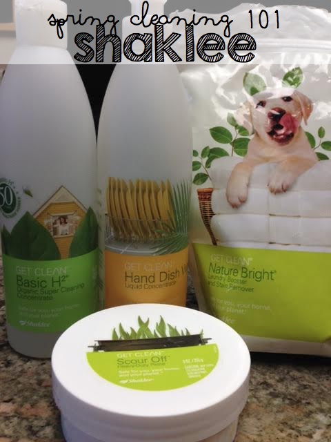 Spring Cleaning 101:  Clean and Green! Your Kitchen and Home