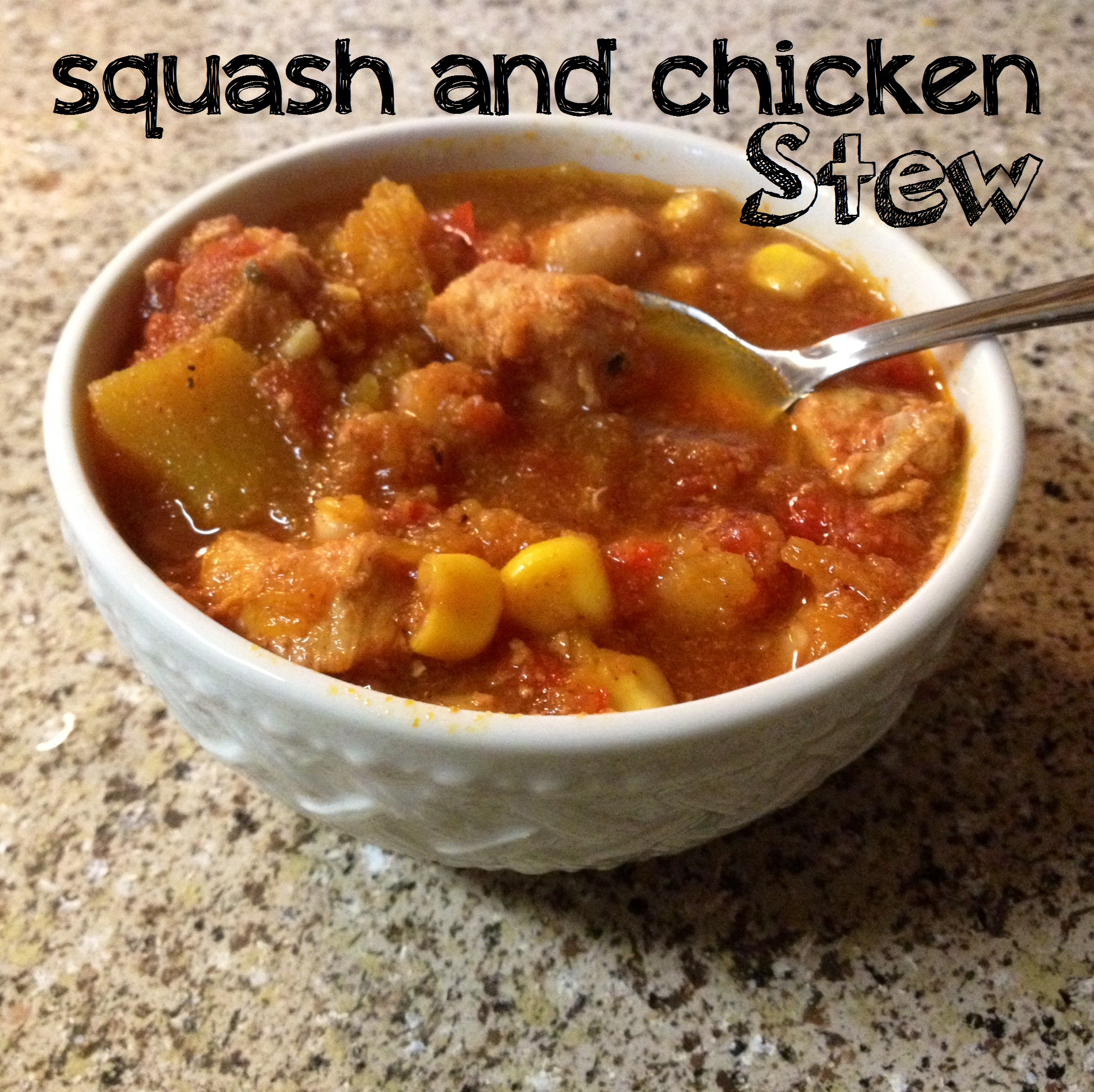 Snowy Day Squash and Chicken Stew Recipe – A Month of 365 Slow Cooker Suppers