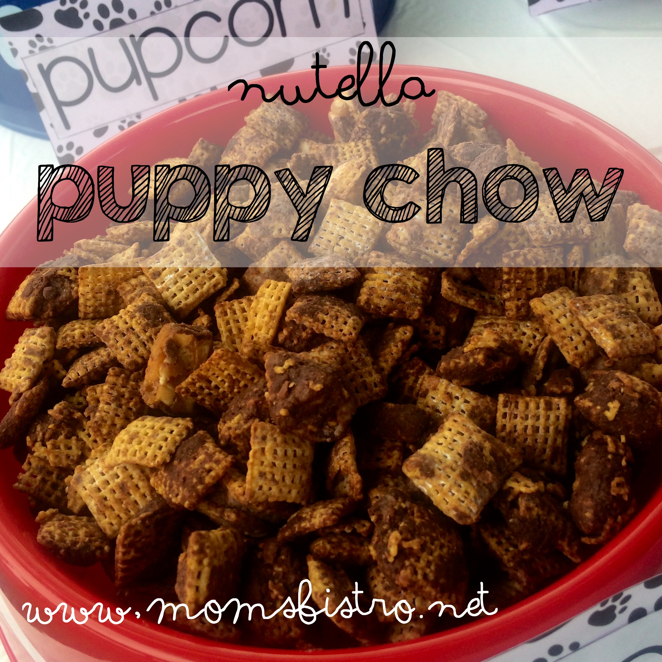 Nutella Puppy Chow Recipe and Anthony's Paw Patrol / Puppy Party At The Park